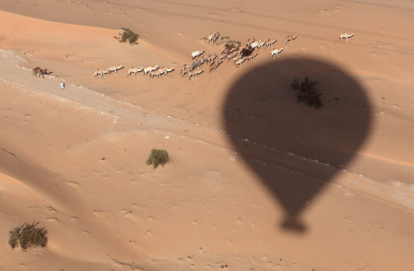 Hot air ballooning over the UAE desert.