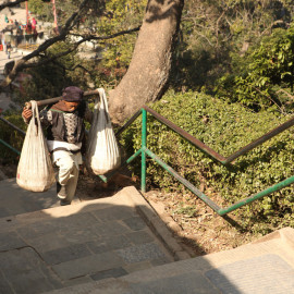 Resident of Kathmandu, Nepal, carrying sacks on his shoulders.