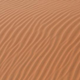 Soft sands of the Liwa Desert