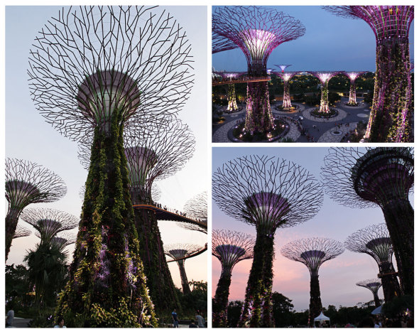 Singapore Solar-powered supertrees