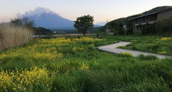 Kawaguchiko-Mount-Fuji
