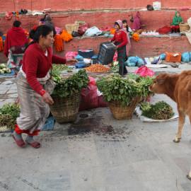 Colorful open-air market in Kathmandu, Nepal