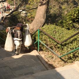 Resident of Kathmandu, Nepal, carrying sacks on his shoulders.
